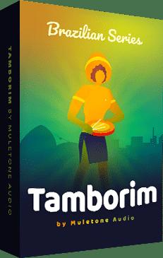 Brazilian Series: Tamborim